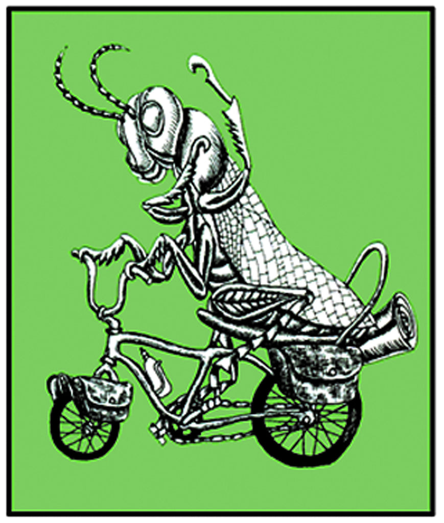 Grasshopper On Bike