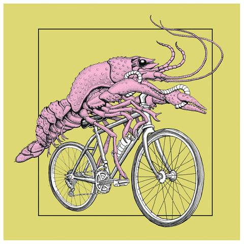 Crawfish on Bike