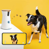 Furbo Dog Camera, Treat Tossing