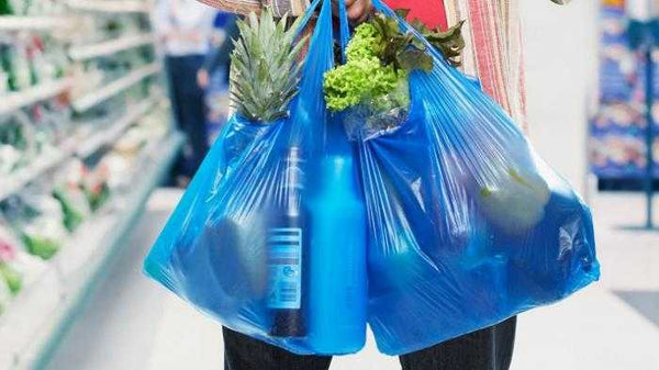 Jakarta to ban single-use plastic bags by June
