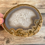 "Large Natural Agate Slice - Approx 5.3"" Long - Large Agate Slice"