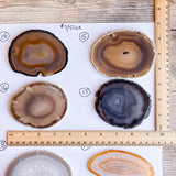 Reserved for Paul Dusenbury: Set of 16 Large Natural Agate Slices