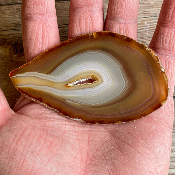 "Natural Agate Slice (Approx 3.55"" Long) w/ Quartz Crystal Druzy Geode Center"