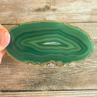 "Green Agate Slice (Approx 3.75"" Long) w/ Quartz Crystal Druzy Geode Center"