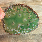 "Green Agate Slice: Approx 3.25"" Long, Geode Quartz Crystal"