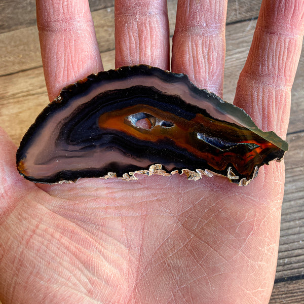 "Natural Agate Slice (Approx 3.75"" Long) w/ Several Natural Holes"