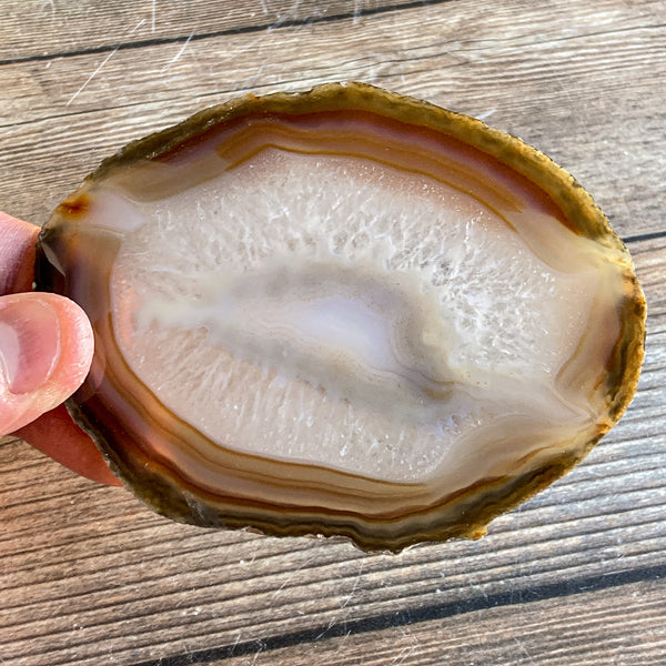 "Natural Agate Slice: Approx 4.05"" Long, Quartz Crystal Coaster Geode Stone"