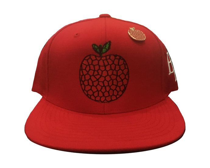 Red Art Apple NYC x Billionaires Row Snapback