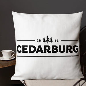 Front of 22 by 22 inch pillow with 1843 Cedarburg design