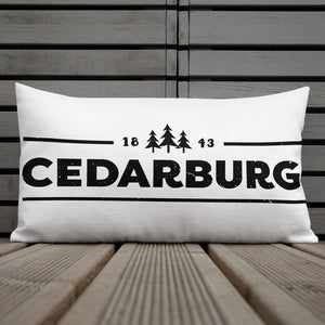 back of 20 by 12 inch pillow with 1843 Cedarburg design in black
