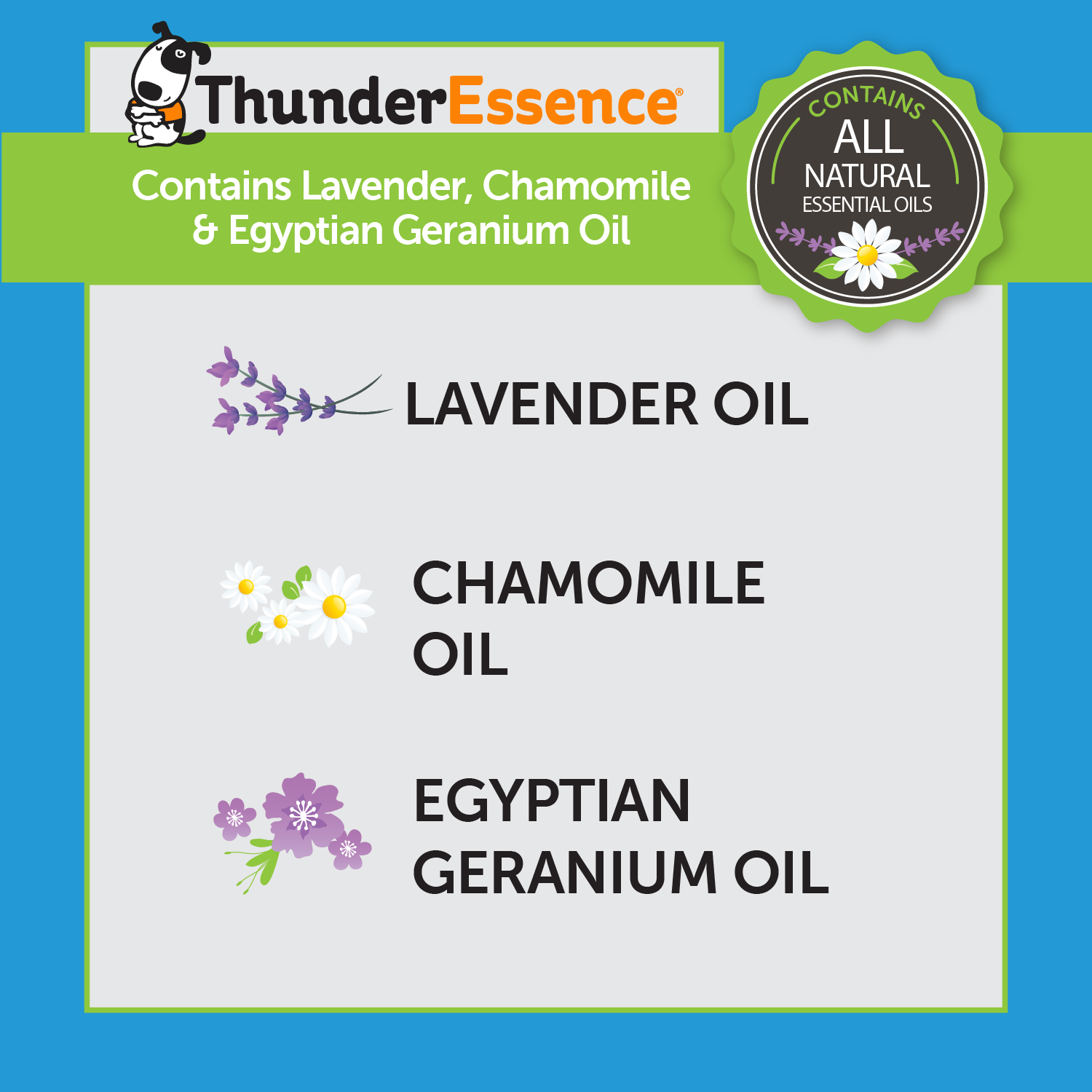 ThunderEssence Essential Oil for Dogs - Calming Ingredients