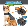 Use ThunderEssence Essential Oil for Dogs with a ThunderShirt