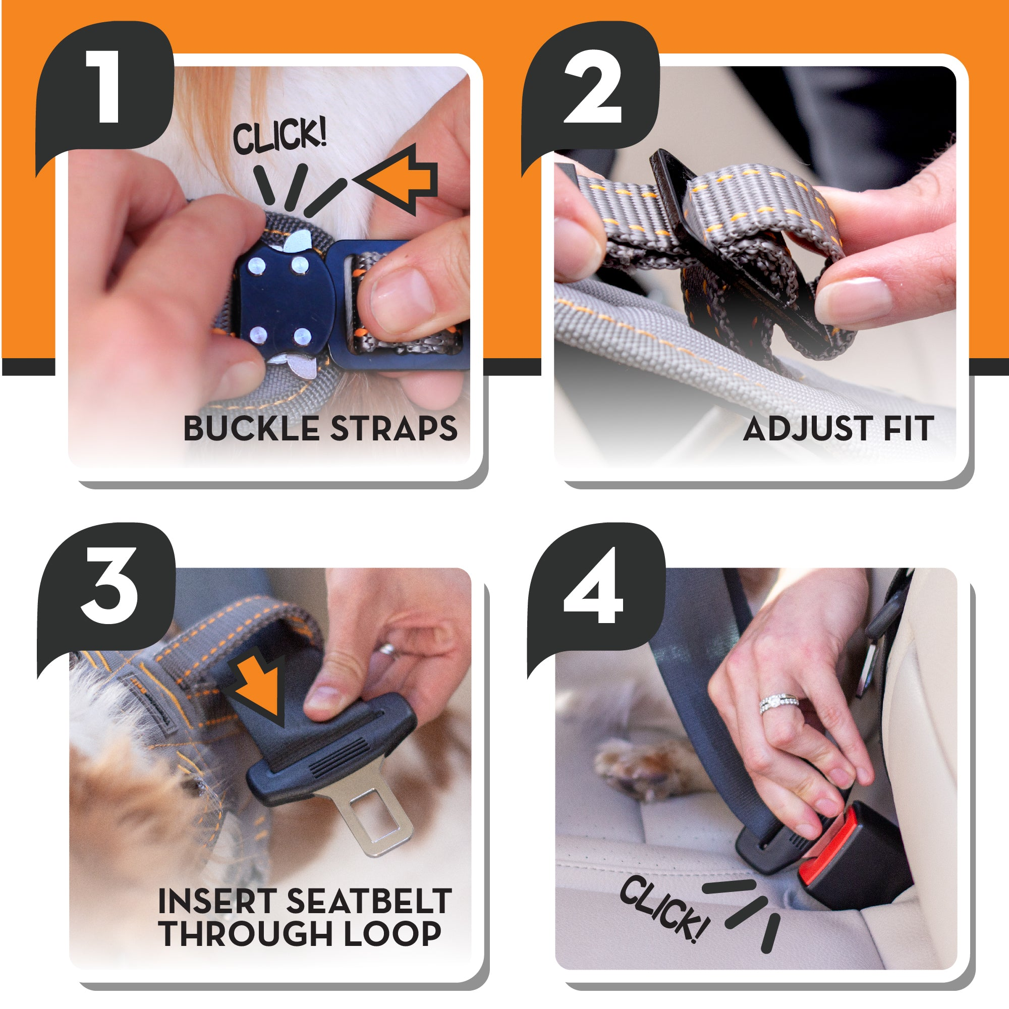 Steps on how to use a ThunderBelt safety belt for dogsT16-BeltGrey-S | T16-BeltGrey-M | T16-BeltGrey-L