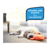 Have a calmer and more relaxed dog with ThunderEssence