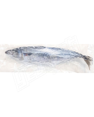 Whole Slimey Mackerel