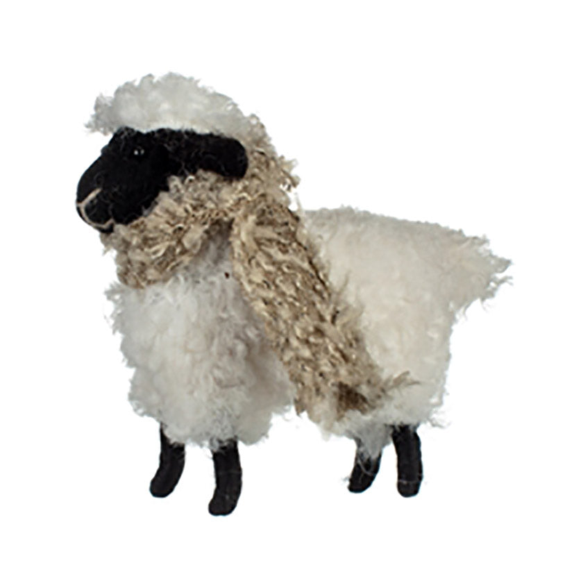 Sheep with a scarf