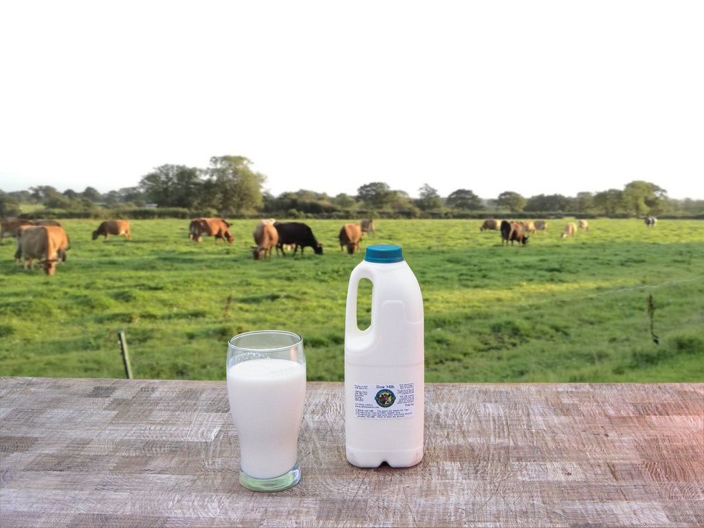 1 bottle of raw milk (2 pints / 1.14 litres)