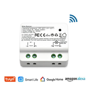 1 pc - Tuya Smart Life WiFi Light Switch Alexa Echo, Google Home Voice Control, 10A, App Remote Control Lights, Set Timer for Lamps