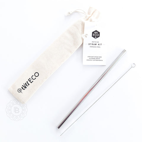 Ever Eco Stainless Steel Straw and Pouch - Silver