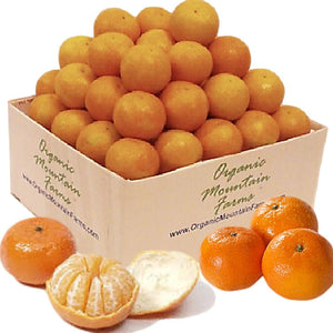 Organic Candy Clementines - Organic Mountain Farms  - 3