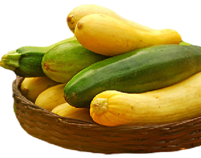 Organic Summer Squash Medley - Organic Mountain Farms