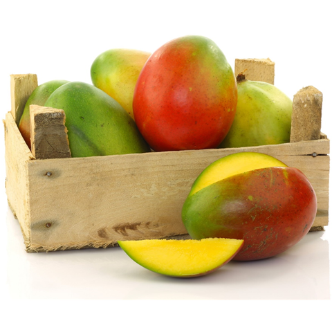 Organic Mangos - Organic Mountain Farms
