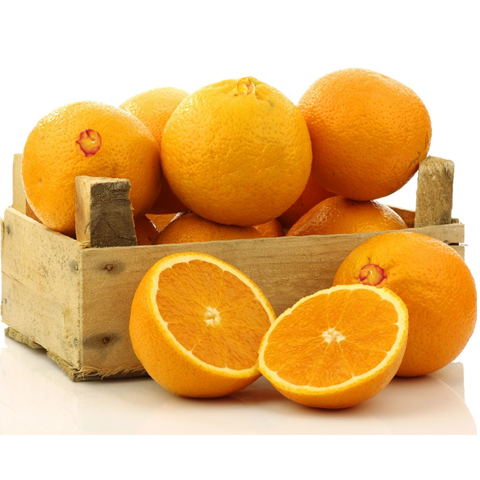 Snack Pack of Organic Navel Oranges - Organic Mountain Farms