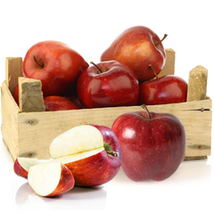 Organic Red Delicious Apples - Organic Mountain Farms