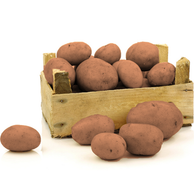 Organic Potatoes - Red Skins - Organic Mountain Farms  - 1