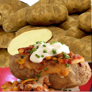 Organic Idaho Baking Potatoes - Organic Mountain Farms  - 1
