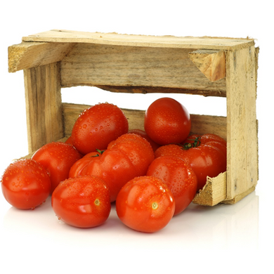 Organic Tomatoes - Organic Mountain Farms