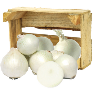 Organic White Onions - Organic Mountain Farms