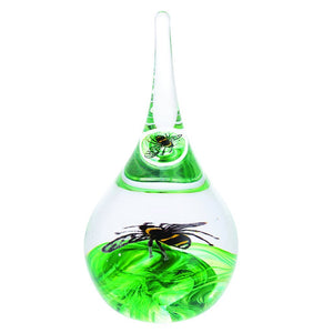 Caithness Glass Bee Ring Stand-delivery 2021-Caithness Glass-Goviers of Sidmouth