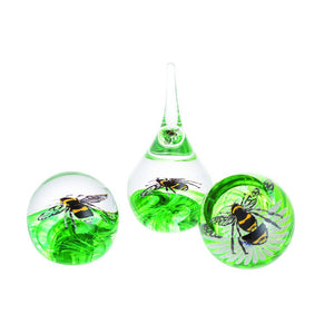 Caithness Glass Buzzing Bee Paperweight-delivery 2021-Caithness Glass-Goviers of Sidmouth
