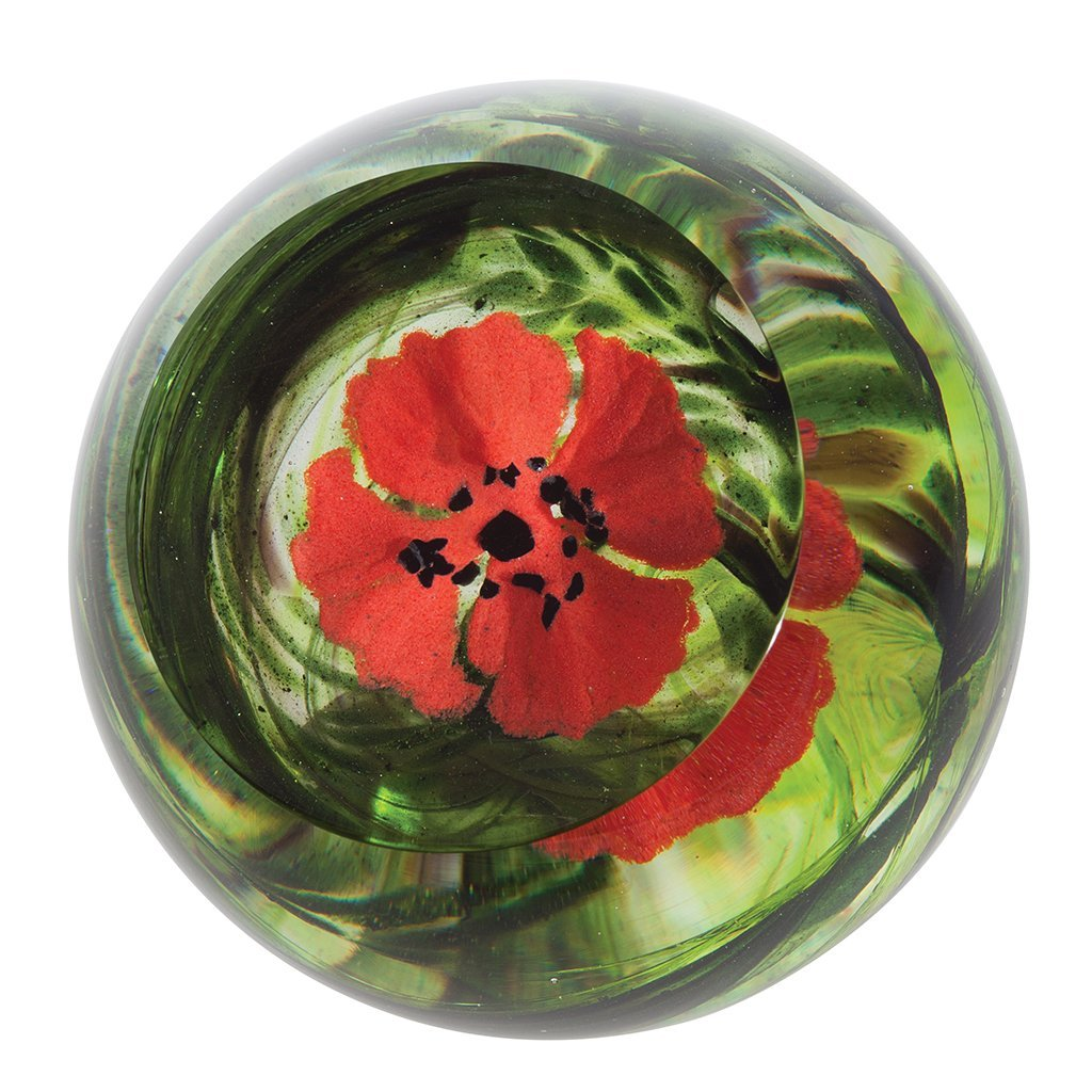 Caithness Glass Flanders Field Paperweight-delivery 2021-Caithness Glass-Goviers of Sidmouth