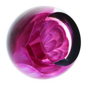 Caithness Glass Floral Charms Carnation Paperweight-delivery 2021-Caithness Glass-Goviers of Sidmouth