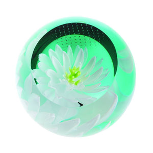 Caithness Glass Floral Charms Water Lily Paperweight-delivery 2021-Caithness Glass-Goviers of Sidmouth