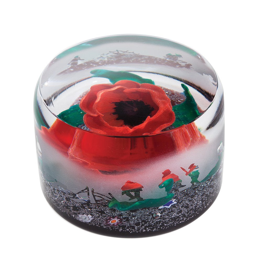 Caithness Glass In Flanders Field Limited Edition Paperweight-delivery 2021-Caithness Glass-Goviers of Sidmouth