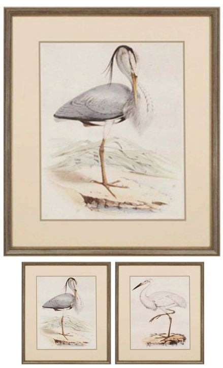 "Keys Antique Heron  G - 28"" H X 24"" W  Framed Artwork"
