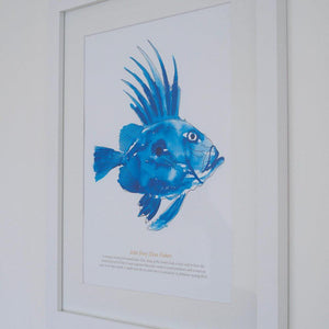 John Dory Watercolour Print SeaKisses Wall Art
