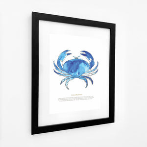 Crab Watercolour Print SeaKisses Wall Art