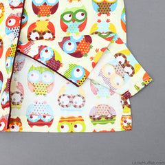 Multicolour Owls