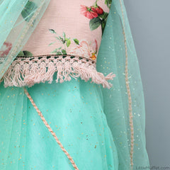Pre Order: Peach Choli And Mint Stitched Saree