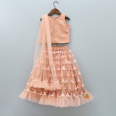Pre Order: Rust Embroidered Top With Ghagra And Dupatta Attached