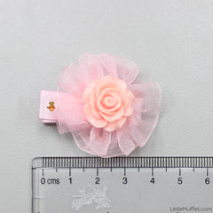 Roses- Peach- Set Of 2