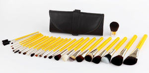 Luxury 24 Brush set