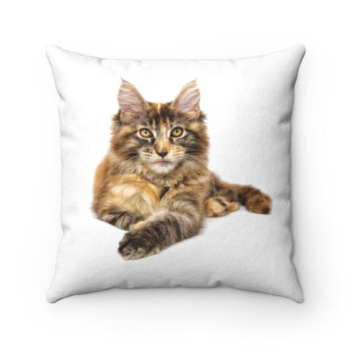 Faux Suede Square Pillow: Maine Coon Home Decor Printify 14