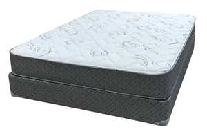 Sanarac Plush TWIN Mattress and Box Spring Symbol Mattress