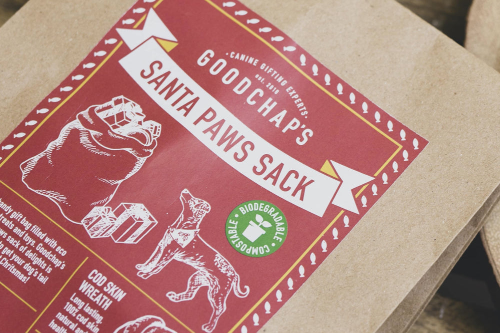 Santa Paws Sack for Dogs