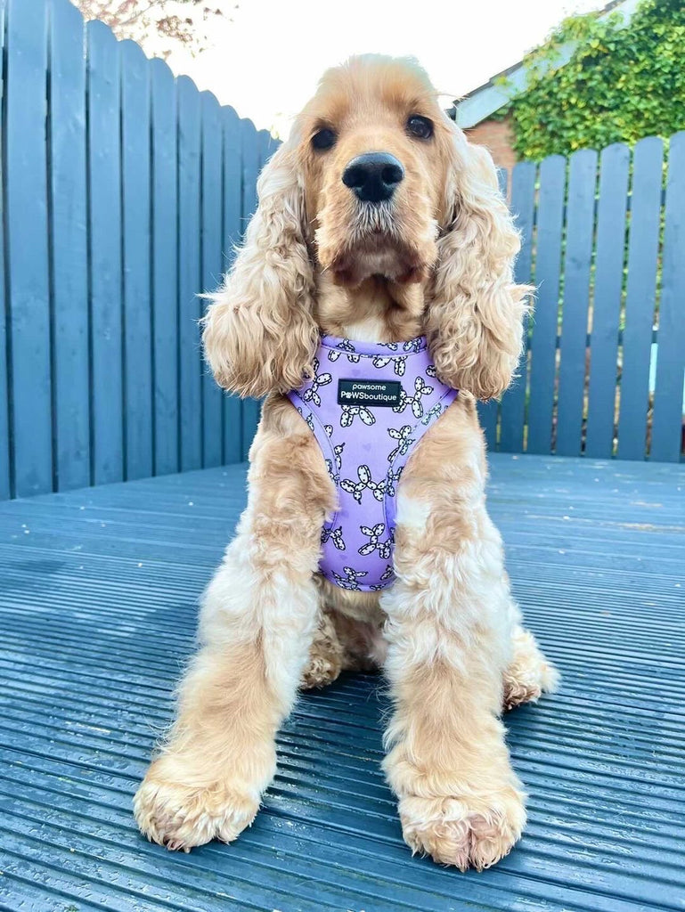 Adjustable Harness - Party Animal - Lilac
